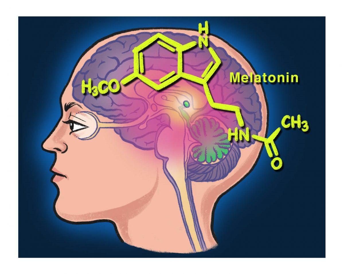 Rythme circadien lumière bleue